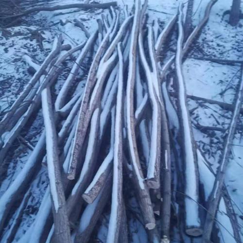 吉林出售支树杆
